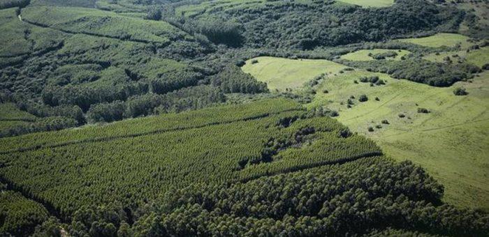 Governo anuncia Programa de Regularização Ambiental (PRA)