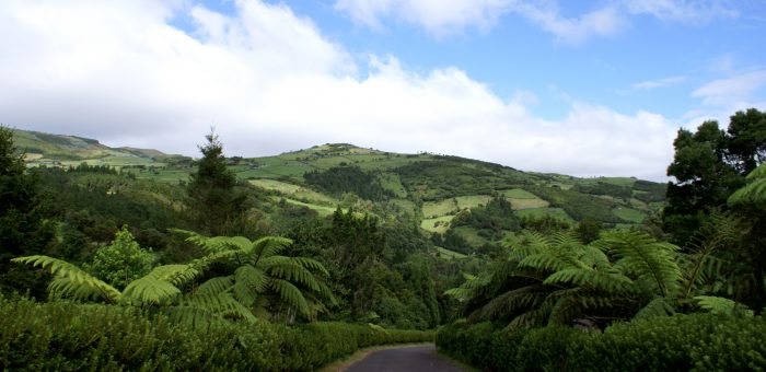 Código Florestal: Supremo decide a favor dos agricultores