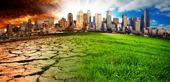 Mudança climática afeta crescimento de plantas